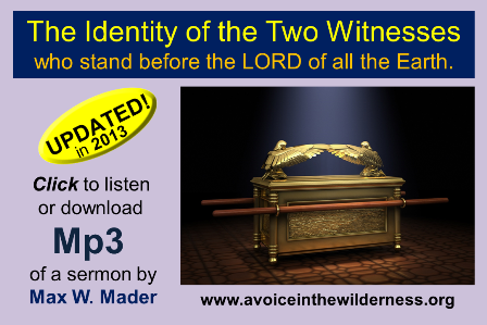who are the two witnesses